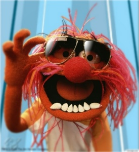 the-muppets-animal